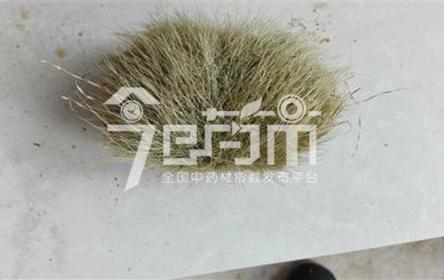 猪砂的功效与作用以及猪砂图片