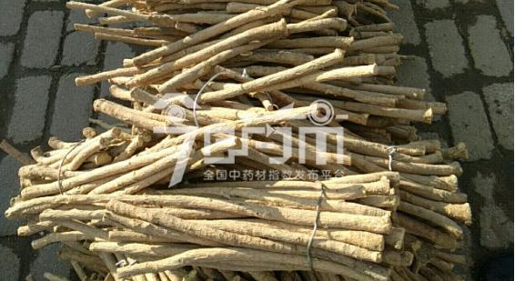 岷县药材市场45元/kg成交的黄芪节子